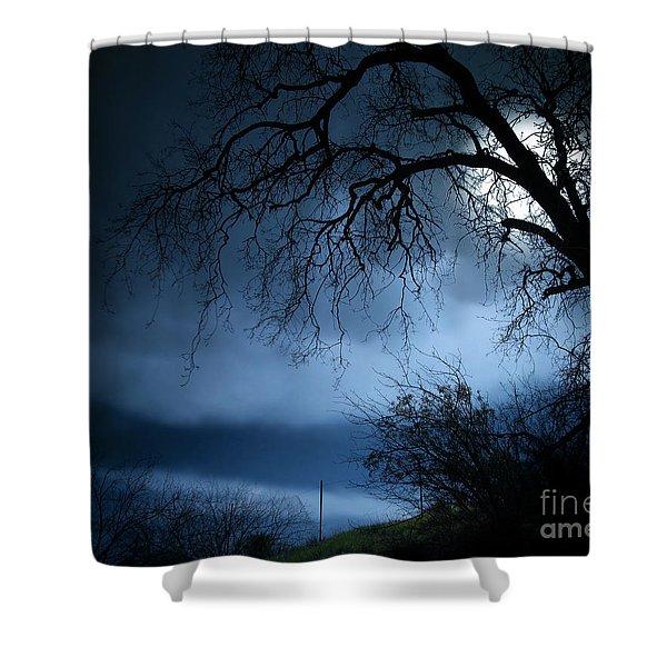 Shadowlands 3 Shower Curtain by Bedros Awak