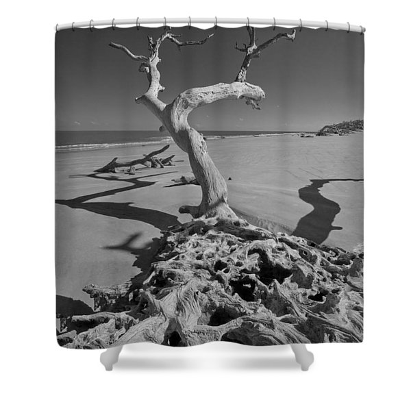 Shadows At Driftwood Beach Shower Curtain by Debra and Dave Vanderlaan