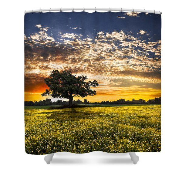 Shadows At Sunset Shower Curtain by Debra and Dave Vanderlaan
