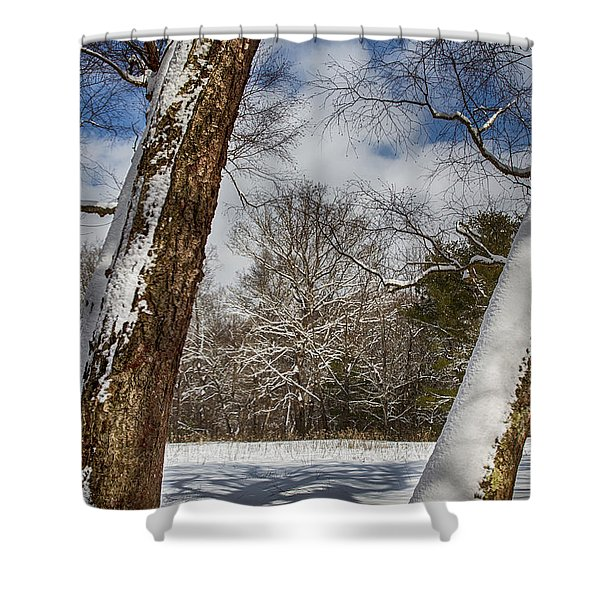Shadows On The Snow Shower Curtain by John Haldane