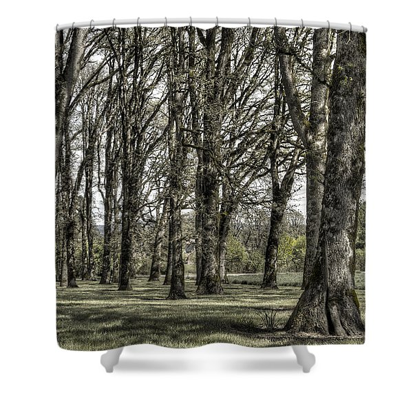 Shady Grove Shower Curtain by Jean Noren