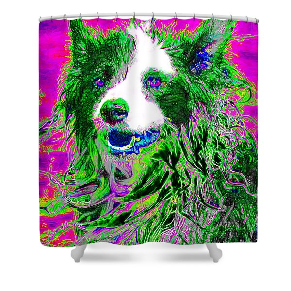 Sheep Dog 20130125v2 Shower Curtain by Wingsdomain Art and Photography