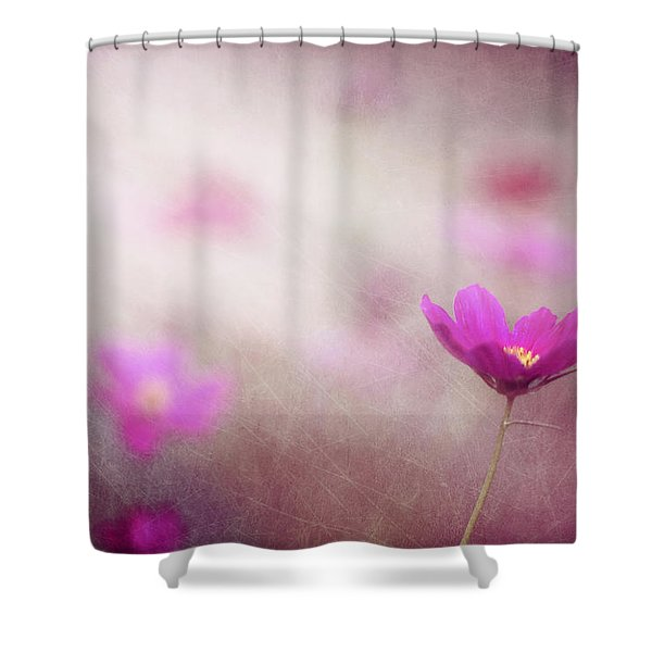 Shine On Me Shower Curtain by Amy Tyler