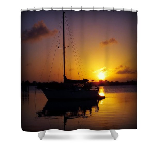 SILENCE of NIGHT Shower Curtain by KAREN WILES
