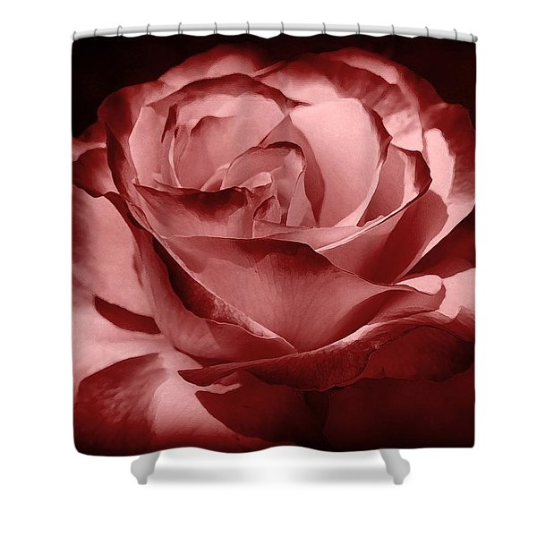 silk  Shower Curtain by Athala Carole Bruckner