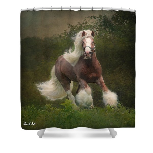 Simon And The Storm Shower Curtain by Fran J Scott