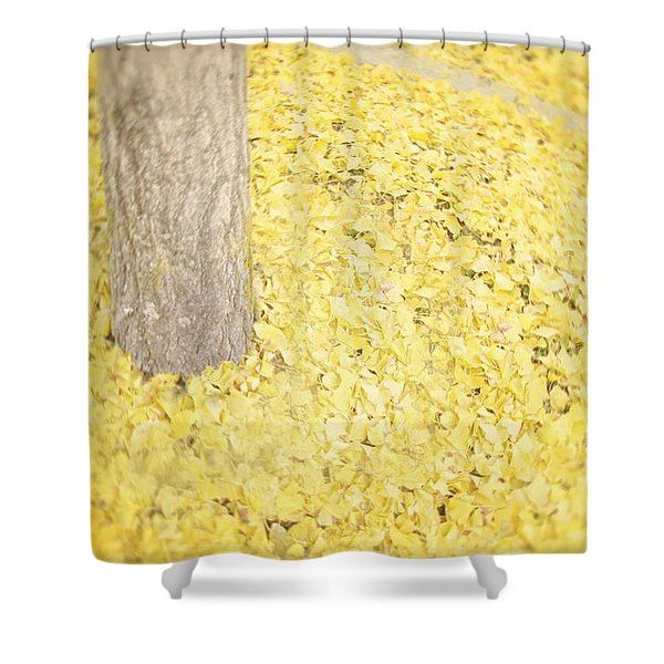 Since You've Been Gone Shower Curtain by Amy Tyler