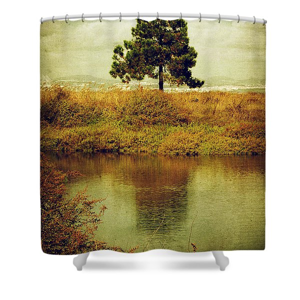 Single pine tree Shower Curtain by Carlos Caetano