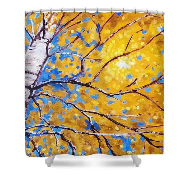 Sky Birch Shower Curtain by Nancy Merkle