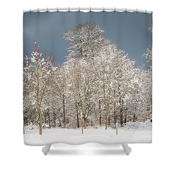 Snow covered trees in the forest in winter Shower Curtain by Matthias Hauser