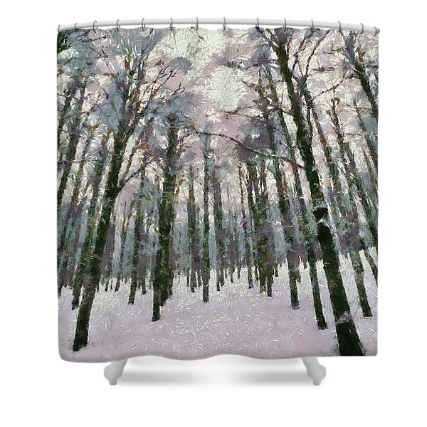 Snow In The Forest Shower Curtain by George Atsametakis