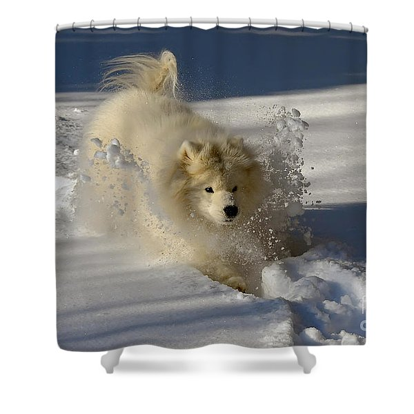 Snowplow Shower Curtain by Lois Bryan