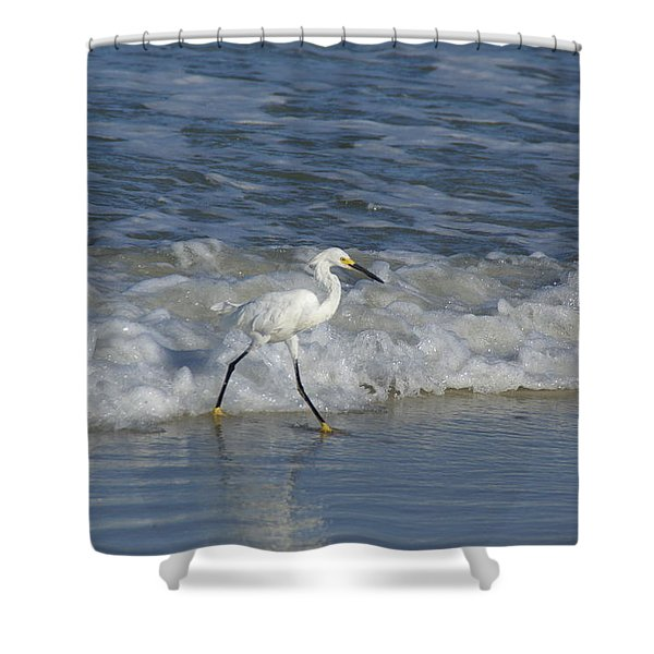 Snowy At The Beach Shower Curtain by Patricia Twardzik
