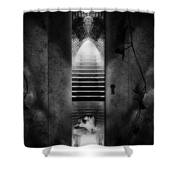 Soft Asylum Shower Curtain by Bob Orsillo