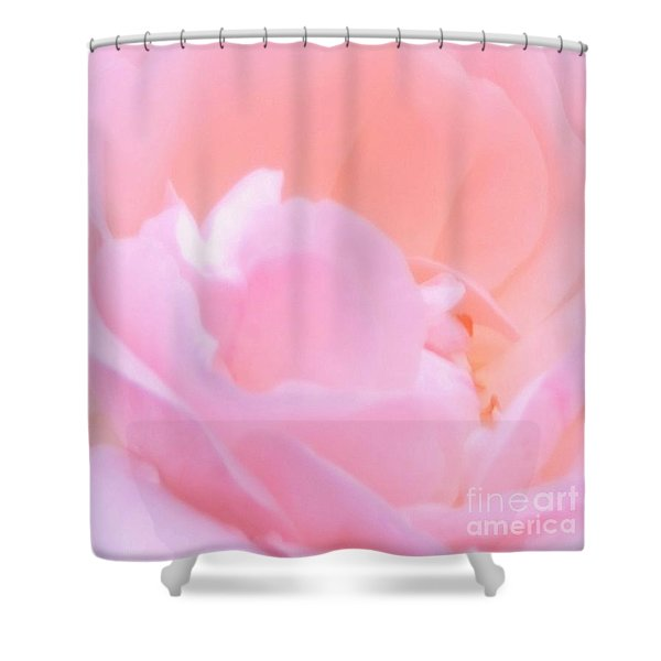Softness Of A Rose Shower Curtain by Kathleen Struckle