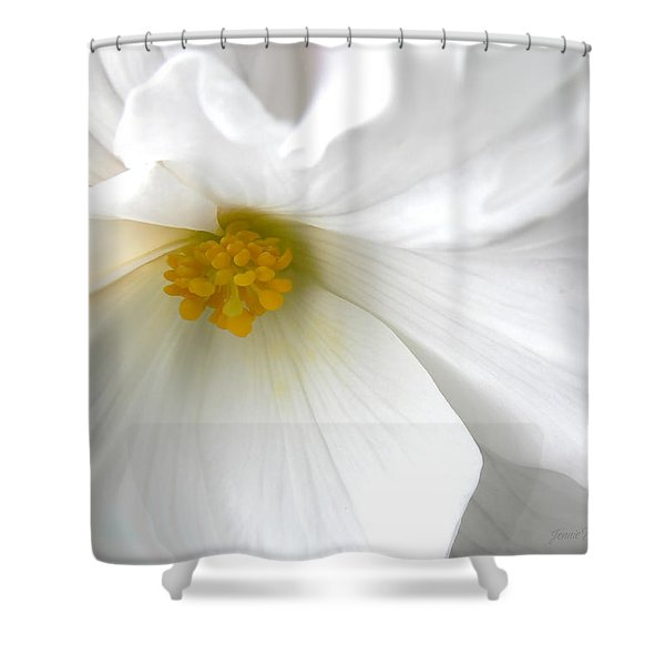 Softness of a White Begonia Flower Shower Curtain by Jennie Marie Schell