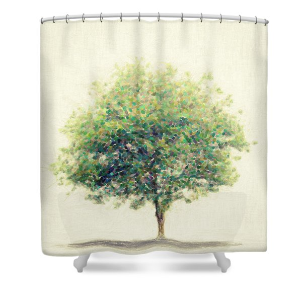 Soledad Shower Curtain by Taylan Soyturk