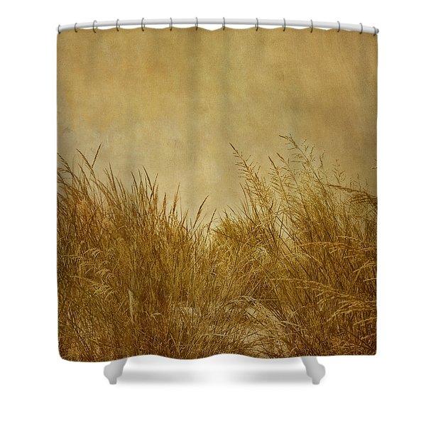 Solitude Shower Curtain by Kim Hojnacki