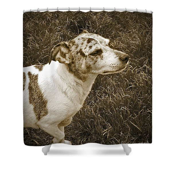 Something In The Air Shower Curtain by Adri Turner