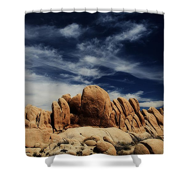Songs Of Misery Shower Curtain by Laurie Search