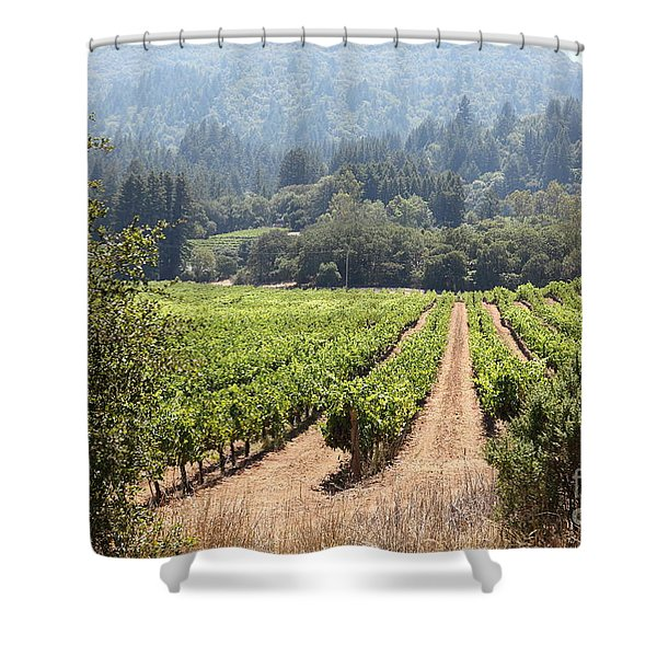 Sonoma Vineyards In The Sonoma California Wine Country 5d24515 Shower Curtain by Wingsdomain Art and Photography
