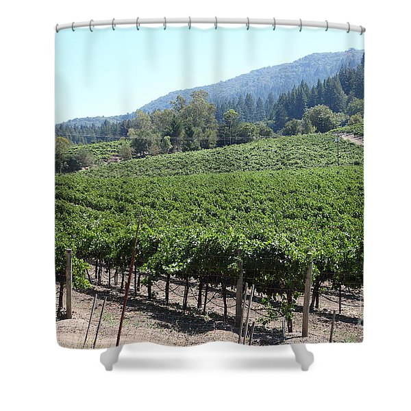 Sonoma Vineyards In The Sonoma California Wine Country 5d24541 Shower Curtain by Wingsdomain Art and Photography