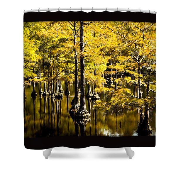 Sounds Of Time Shower Curtain by Karen Wiles