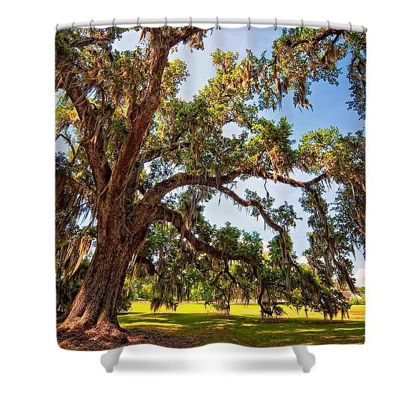 Southern Comfort Shower Curtain by Steve Harrington
