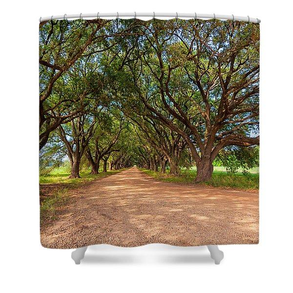 Southern Journey Shower Curtain by Steve Harrington