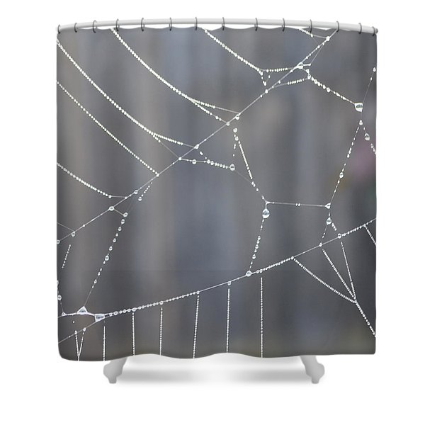 Spider Web In Rain Shower Curtain by Cheryl Miller