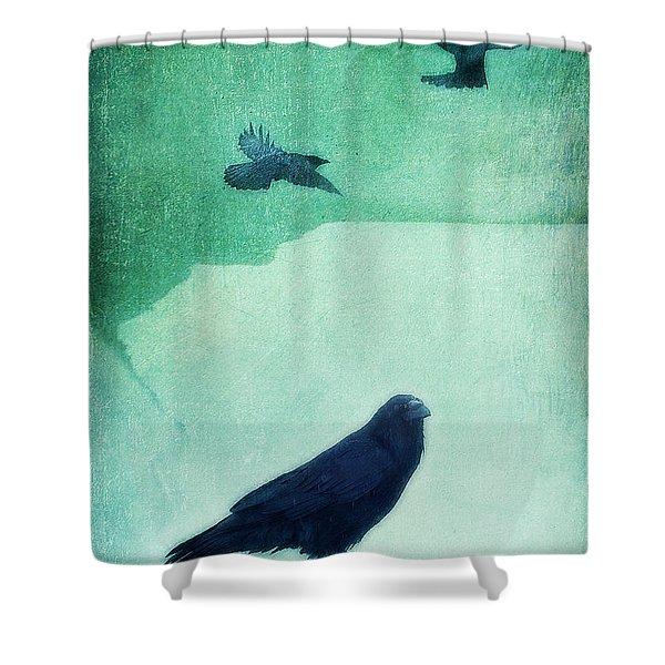 spirit bird Shower Curtain by Priska Wettstein