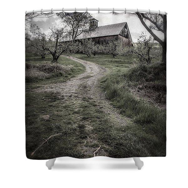 Spooky Apple Orchard Shower Curtain by Edward Fielding