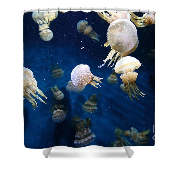 Spotted Jelly Fish 5D24951 Shower Curtain by Wingsdomain Art and Photography