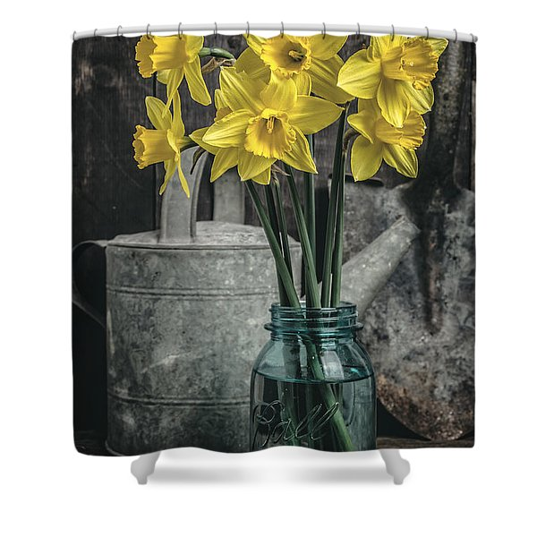 Spring Daffodil Flowers Shower Curtain by Edward Fielding
