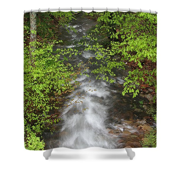 Spring Green Framing Bubble Brook Shower Curtain by Juergen Roth