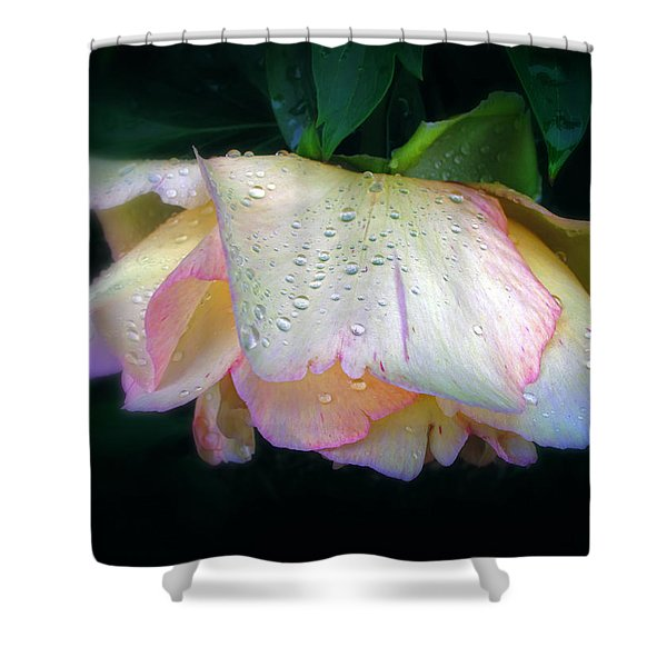Spring Pearl Shower Curtain by Jessica Jenney