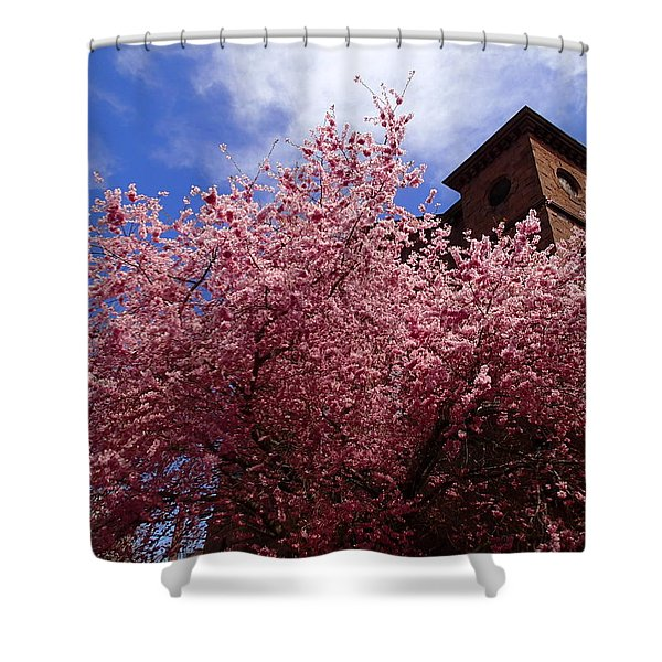 Spring Shower Curtain by Robert Nickologianis
