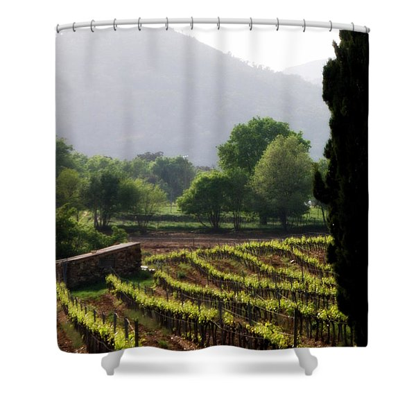 Spring Vines in Provence Shower Curtain by Lainie Wrightson