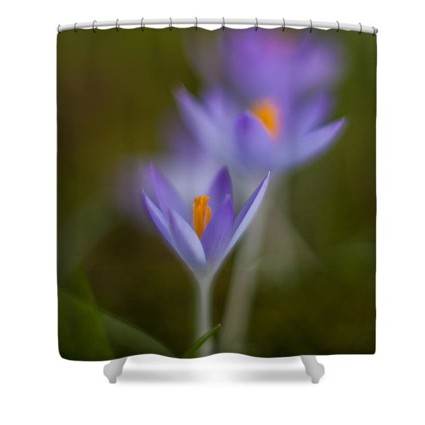 Springs Soft Procession Shower Curtain by Mike Reid