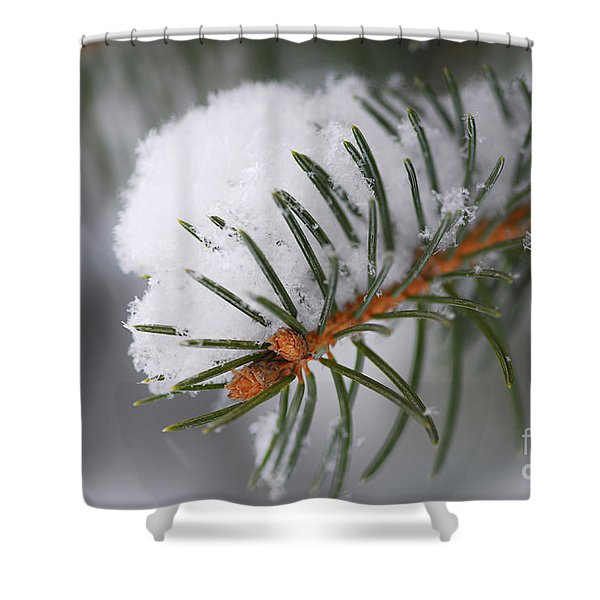 Spruce Branch With Snow Shower Curtain by Elena Elisseeva