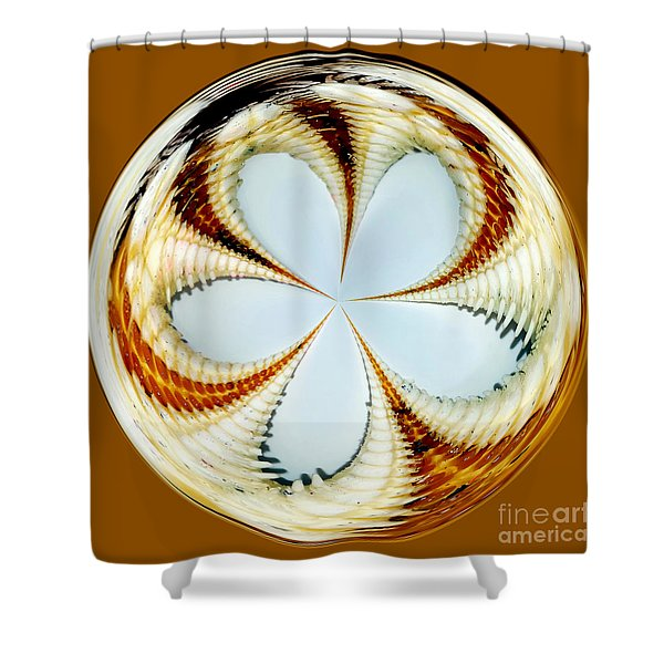 Starfish To Flower - Orb Shower Curtain by Kaye Menner