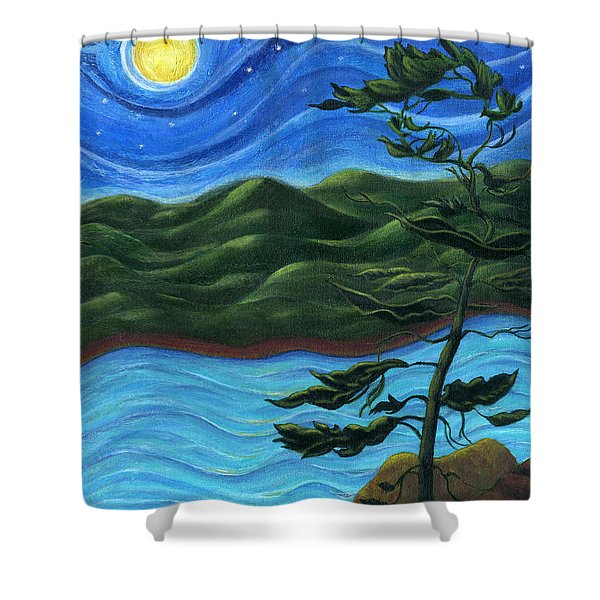 Starry Night at Algonquin Park Shower Curtain by Catherine Howard