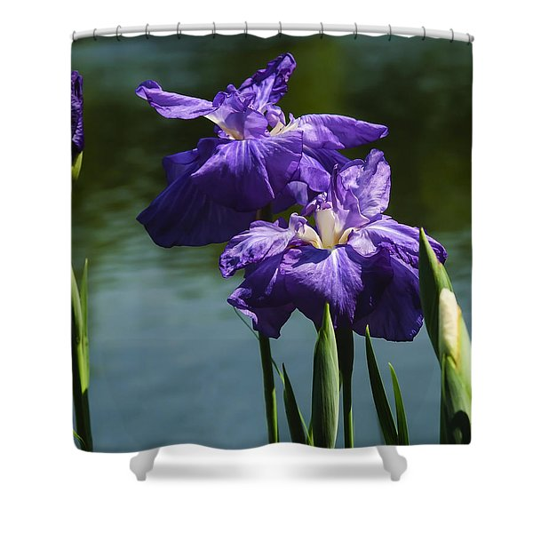 Still Beautiful Shower Curtain by Penny Lisowski