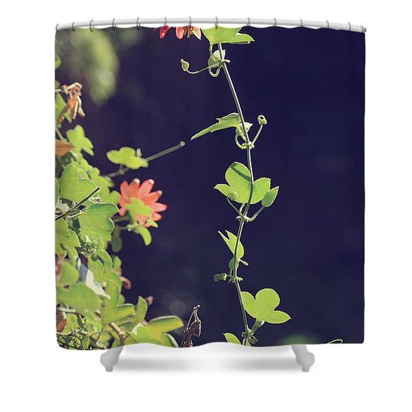 Still Holding On Shower Curtain by Laurie Search