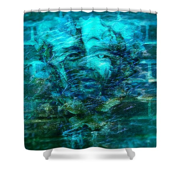 Stone Face Under The Water Shower Curtain by Lilia D