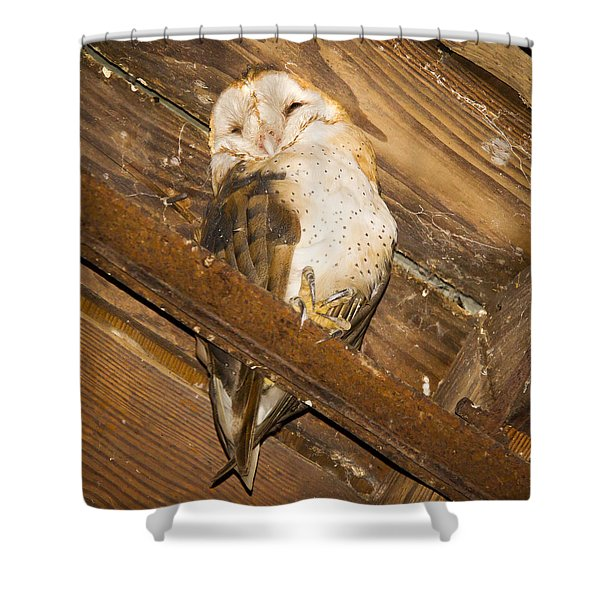 Stop bothering me Shower Curtain by Jean Noren