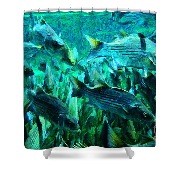 Striped Bass - Painterly v1 Shower Curtain by Wingsdomain Art and Photography
