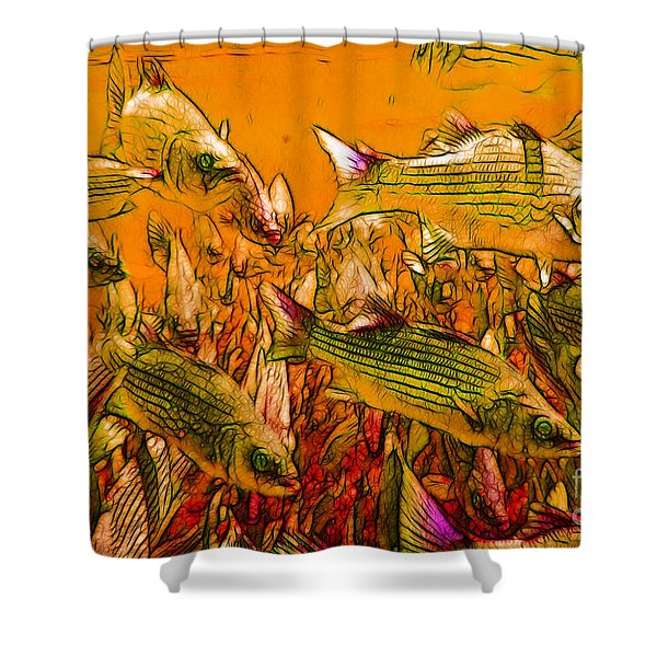 Striped Bass Shower Curtain by Wingsdomain Art and Photography