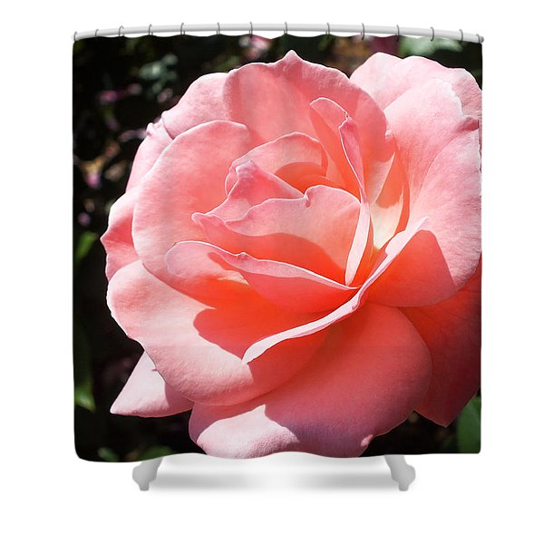 Summer Beauty Shower Curtain by Lucinda Walter