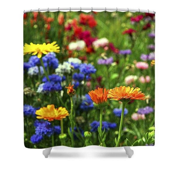 Summer flowers Shower Curtain by Elena Elisseeva